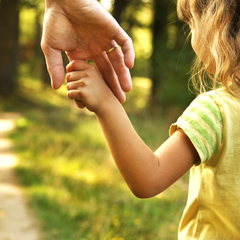 picture of a child holding an adults hand