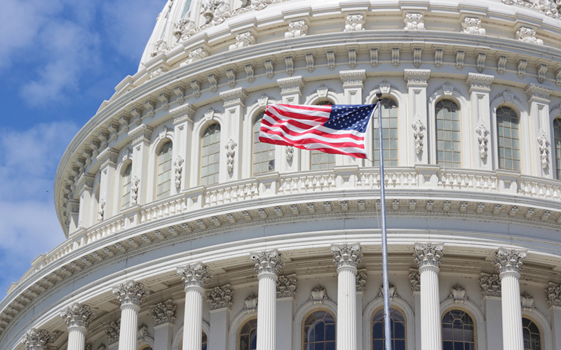 Picture of US Capitol with flag