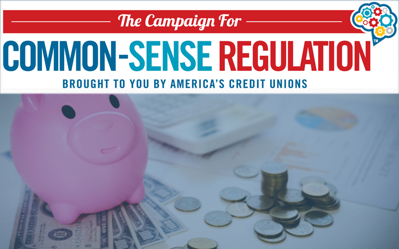 Picture of a Piggy bank and money with business document and Common-Sense Regulation logo